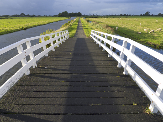 A white wooden bridge in the Jisperveld, the Netherlands